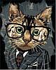 Картины по номерам 40*50 см В КОРОБКЕ Офисный кот Artstory