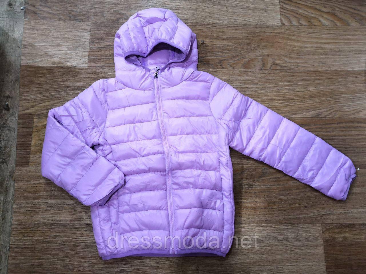 d06efba0620 Куртка демисезонная для девочек Glo-Story 110-160 р.р.  продажа ...