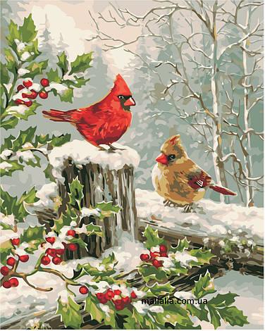 Картины по номерам 40*50 см В КОРОБКЕ Зимние птички Artstory