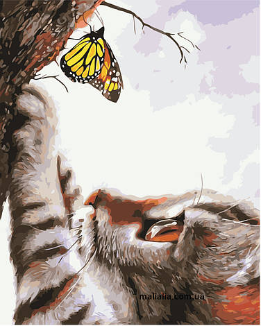 Картины по номерам 40*50 см В КОРОБКЕ Кот и бабочка Artstory