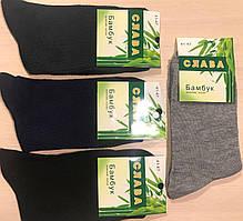 Носки мужские демисезонные бамбук СЛАВА размер 41-47