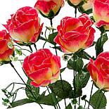 Букет  роз Фрау, 54см (10 шт в уп), фото 2