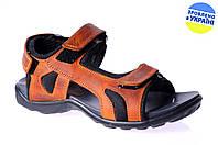 Мужские сандалии трековые mida 3332рыж коричневые   летние , фото 1