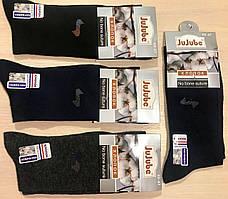 Носки мужские демисезонные хлопок JuJuBe размер 41-47 F506