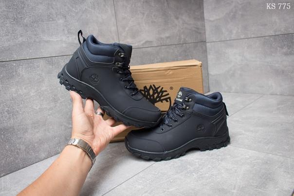 Зимние ботинки Timberland Canard Oxford (синие)