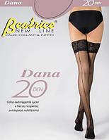 """Панчохи зі швом ззаду Dana 20 den """"Beatrice"""""""