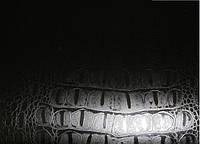 Виниловая пленка по кожу крокодила с микроканалами