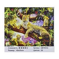 Алмазная мозаика GB 70542 (30) 40х30 см., 30 цветов, в коробке