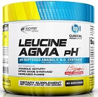 Лейцин Агма, BPI Sports, Leucine Agma, 40 порций, СРОК 05.2015