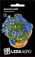 Семена колокольчика Синий, 0,1 гр., карпатский