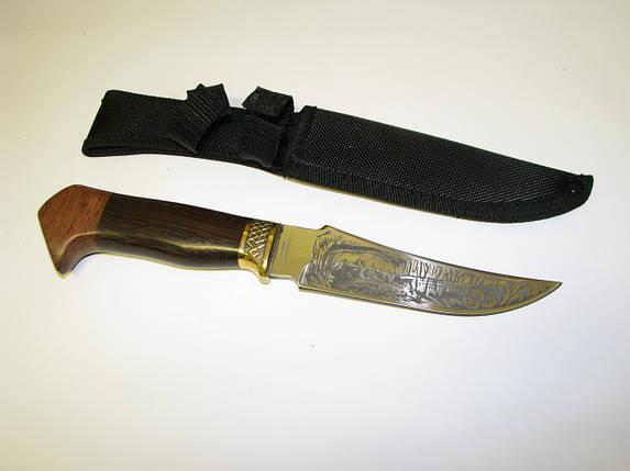 Нож охотничий FB 1853 Лев, фото 2