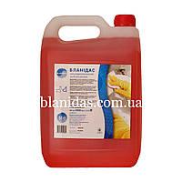 Бланідас-Сильнодіючий миючий засіб для унітазів, 5000мл