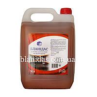 Бланідас-Засіб для миття печей та грилів вручну, 5000мл