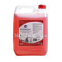 Бланідас-Кислотний засіб для миття санітарних кімнат, 5000мл