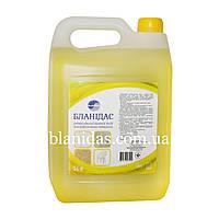 Бланідас-Універсальний миючий засіб для водостійких поверхонь, 5000мл