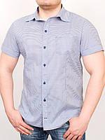 grand ua SICILIA рубашка, фото 1