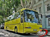 Аренда АВТОБУСА (55) для автобусной перевозки от ДИВА.