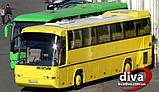 Заказ АВТОБУСОВ в Одессе. Автобус 55 мест., фото 5