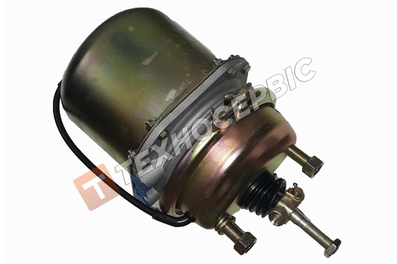 Камера тормозная c энергоаккуммулятором МАЗ тип 24/24 (100-3519200)