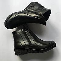 Ботинки Encanto, зима, натур. кожа, 36-41, фото 1