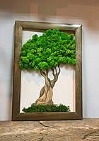 Картина декоративна натуральним мохом, Дерево.