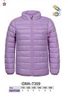 Куртка для девочек оптом, Glo-story, 110-160 см,  № GMA-7359