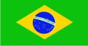 Флажок Бразилии шелк, 10х20см