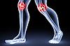 Для суставов и мышц