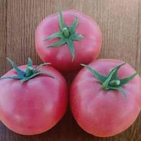 Семена Хепинет F1, 1000 семян — семена розового детерминантного томата, Syngenta