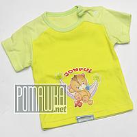 Детская футболка для девочки р. 62 ткань ИНТЕРЛОК 100% хлопок ТМ Ромашка 4388 Желтый
