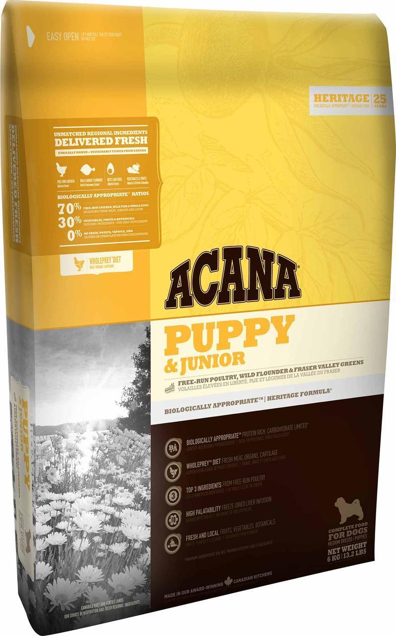 Acana Puppy Large Breed (Акана Пеппі Лардж Брит) - корм для цуценят великих порід 17 кг