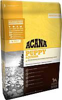 Acana Puppy Large Breed (Акана Пеппі Лардж Брит) - корм для цуценят великих порід 17 кг, фото 1