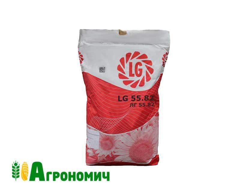 Насіння соняшника ЛГ 5582 | LG 5582 Стандарт від Лімагрейн