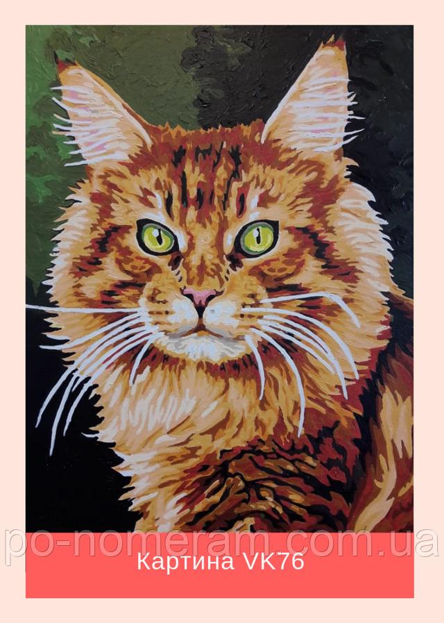Раскраска антистресс кот
