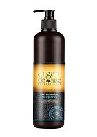 Шампунь с охлаждающим эффектом Argan De Luxe Professional Mint Refreshing Shampoo, 500 ml