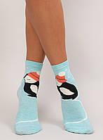 Голубые женские носки с пингвином SK-X20163 , фото 1