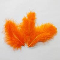 Перья натуральные оранжевые (10 штук)