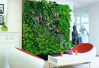 Дизайн растениями, вертикальное озеленение