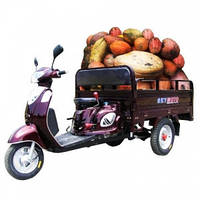 Трицикл Skymoto HERCULES -110 6A, фото 1