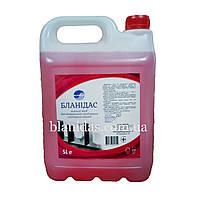 Бланідас-Миючий засіб для ген. прибирання санітарних кімнат, 5000мл