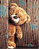 Картины по номерам 40*50 см В КОРОБКЕ Мишка Artstory