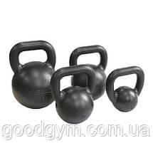 Гиря Eleiko 24 kg 380-0240, фото 2