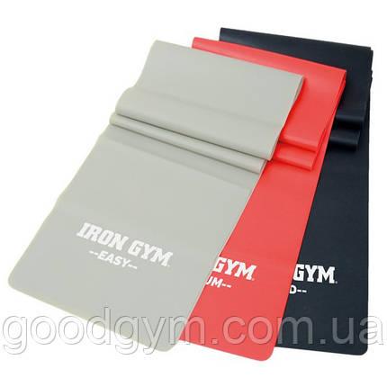Комплект ленточных эспандеров Iron Gym 3шт. IG00127, фото 2