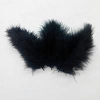 Перья натуральные черные (10 штук)