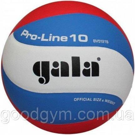 Мяч волейбольный Gala Pro-Line BV5121SA, фото 2