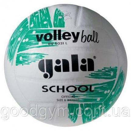 М'яч волейбольний Gala School BV5031LBE, фото 2