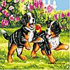 Картины по номерам 40*40 см БЕЗ КОРОБКИ Игра Artstory