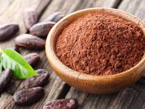 Какао порошок Premium светлый 20-22% , DeZaan TM 200г