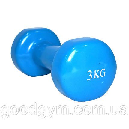 Гантель виниловая Fitex MD2015-3V, 3 кг, фото 2