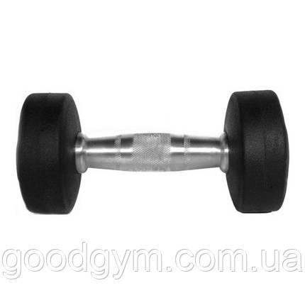 Гантель цельная Eleiko Vulcano 10 kg 362-0100, фото 2